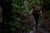 Kichwa woman ventures into the Amazon forest in search of guayusa, a native leaf