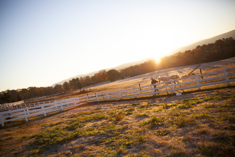 William McNutt leads one of his horses out to pasture at his stable outside Maryville, Tennessee. (Photo: Adam McCauley)