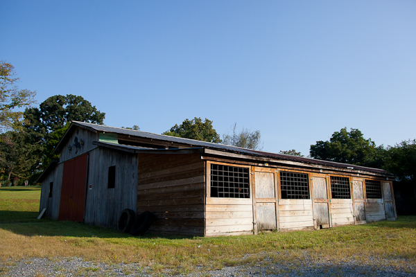 The now-vacant barn Larry Wheelon used to train 27 horses, in Maryville, Tennessee. Wheelon was evicted from the premises in June, less than a month after USDA officials seized 19 of the 27 horses after receiving allegations of animal cruelty. (Photo: Adam McCauley)