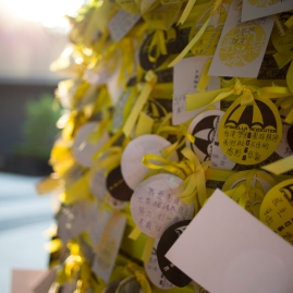 "Yellow ribbons and logos of reading ""Umbrella Revolution"" ring a pillar outside the government offices adjacent Tamar Park. The OccupyCentral protests assumed the title, Umbrella Revolution, after protestors used the household tools to defend themselves against pepper spray deployed by Hong Kong Police. (Photo: Adam McCauley)"
